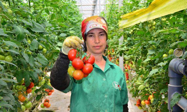 Uluslararası Tarım Sektörü Gündemi