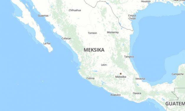 Meksika Tarım Sektörüne Genel Bakış