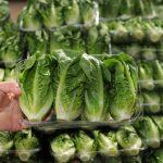 Taze gıdanın geleceği: Pandemiyle gelen kalıplar